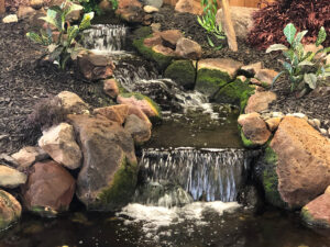 Picture of waterfall in backyard